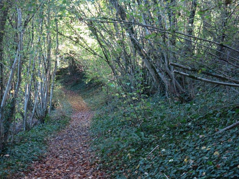 sentier de la Vallée d'Or